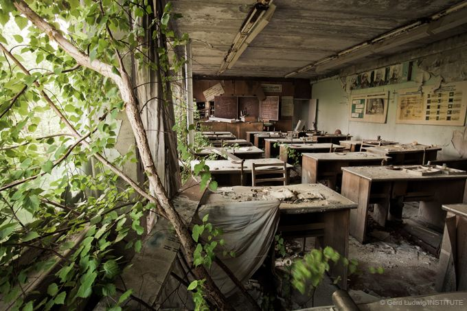 Trees grow in a Pripyat school abandoned 19 years earlier